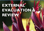 Image of field of gladioli with links to EER schedule, Find and EER report and Evaluation Indicators External evaluation and Review