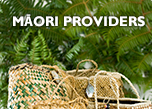 Image of woven kete with links to Development & support and Find a provider  Maori providers