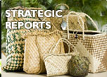 Strategic reports